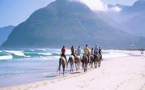 Image result for noordhoek