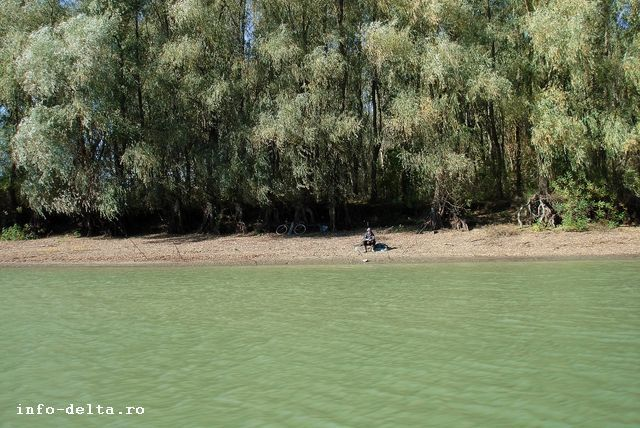 Pescar solitar pe canalul Mila 36 http://www.info-delta.ro/pescuit-18/pescuit/canalul-mila-36-126.html