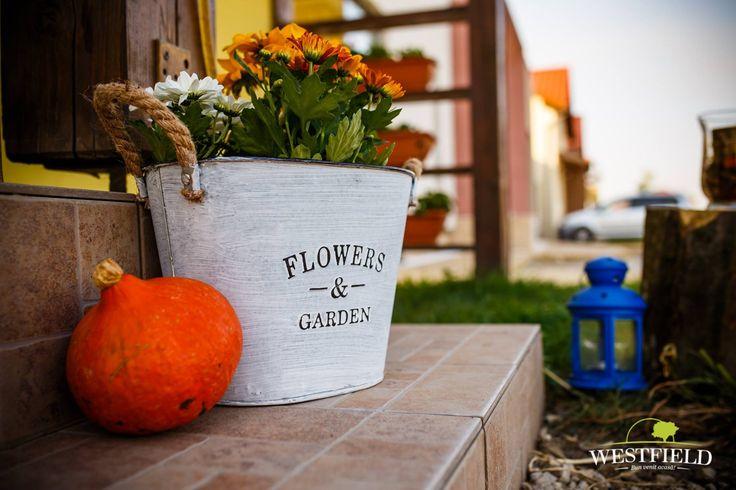Decor de toamnă, în culori vesele #autumn #decor #WestfieldArad #home #ideas #bestplaceintown #flowers #pumpkin