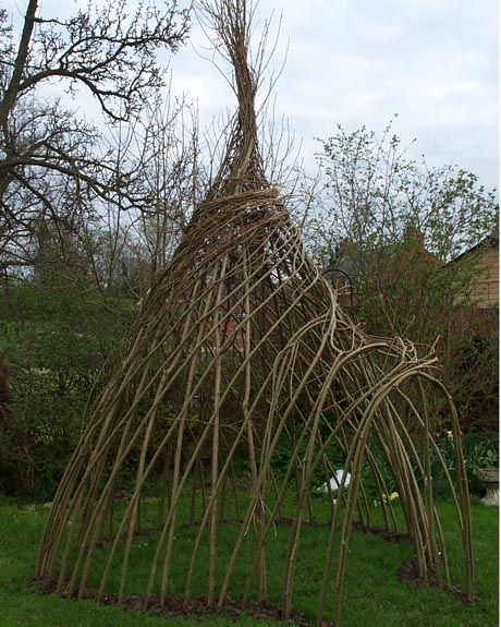 Living Willow Fence | Living Willow Wigwam from Natural Fencing: