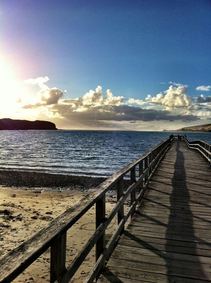 Hokianga Harbour, Northland, New Zealand By Rene Littlejohn