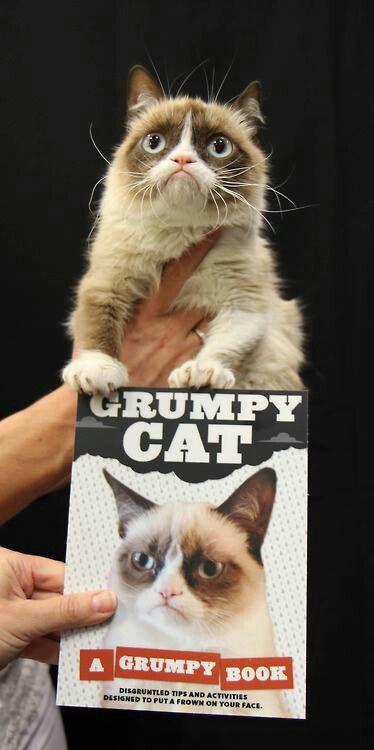 Grumpy Cat, an autobiography