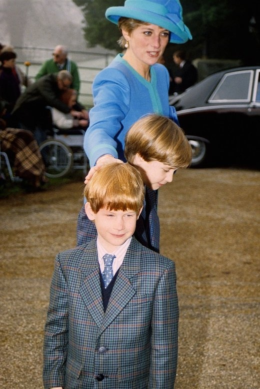The long reaching arm of mum...Diana with Harry and William