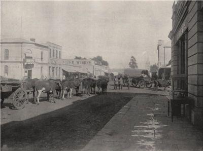 PRETORIA. A street scene. South Africa, antique print 1895