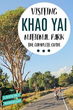 Over 95% of visitors to Thailand's Khao Yai National Park park are locals, many with their own transportation, leaving both English language information and tourism infrastructure limited. I read guidebooks, I scoured message boards and blogs, and I took