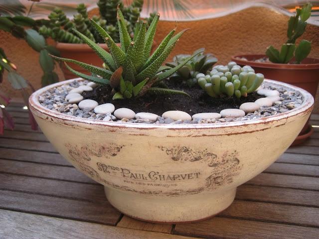 99 best images about mini zen garden on pinterest zen for Jardin zen miniature