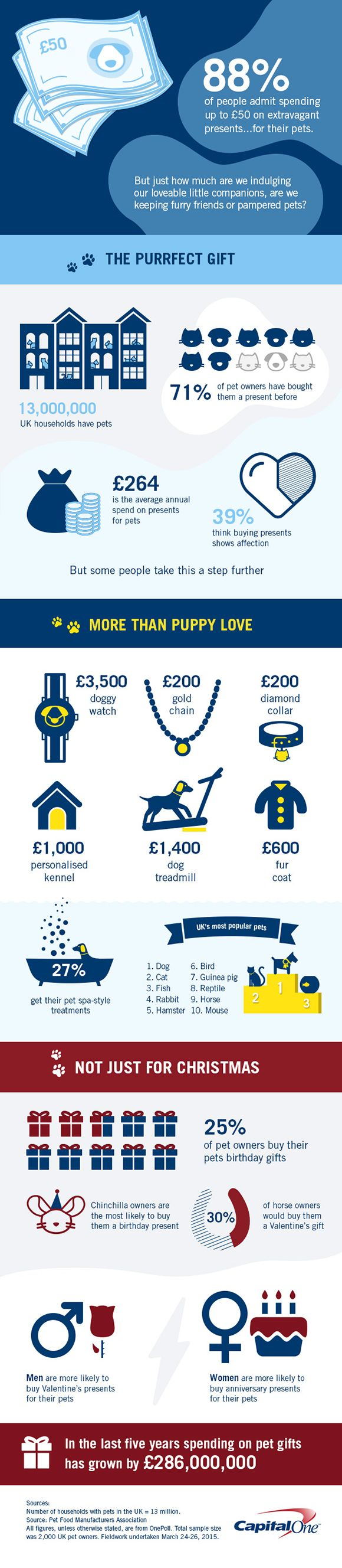 Love your pet? Take a look how much do Brits spend on their pets