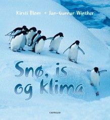 Snø, is og klima av Kirsti Blom (Innbundet)