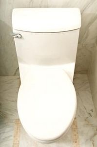 What Causes A Blue Ring In The Toilet Bowl Toilet Bowl