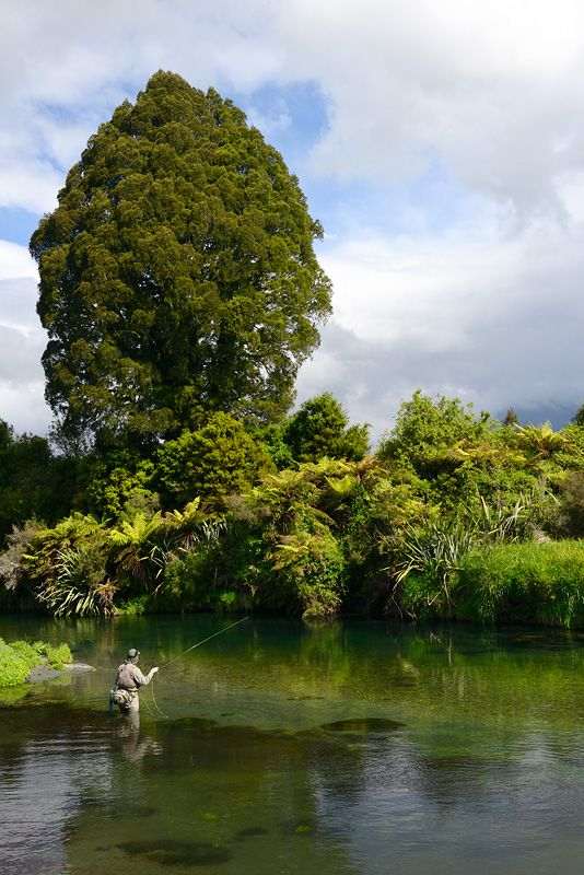 Fly Fishing - New Zealand - what a beautiful place to fish