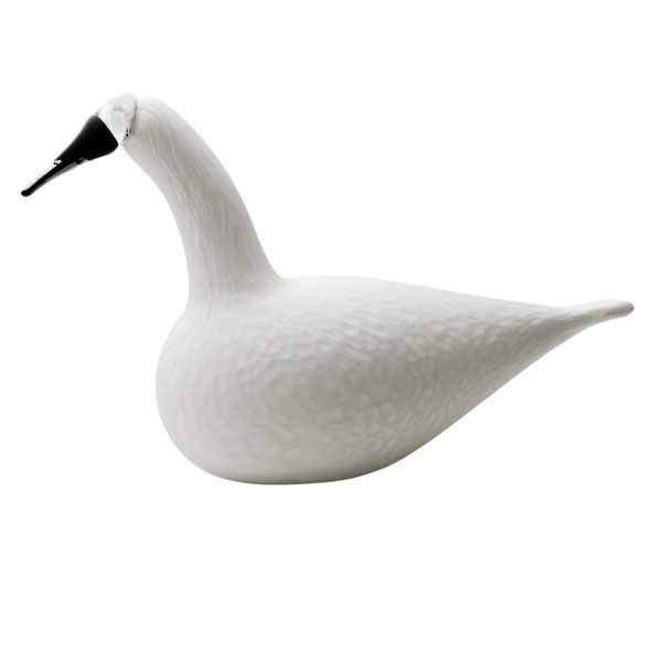 Whooper Swan in white. New bird for 2007.      Manufacturer: Iittala     Design: Oiva Toikka           Size: 210x330 mm     Material: Mouth-blown glass     Color: White