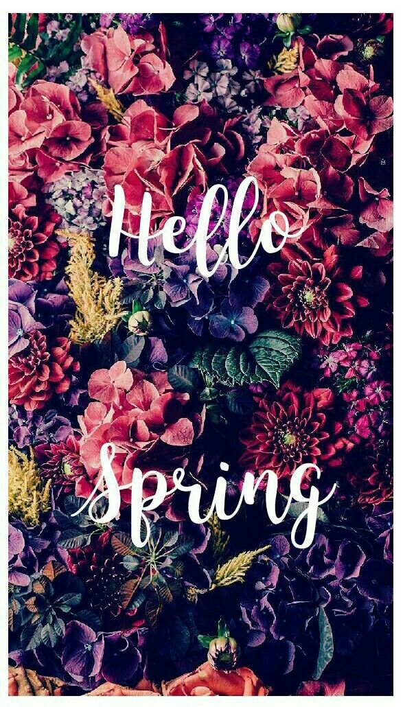 Hello spring @sofi_