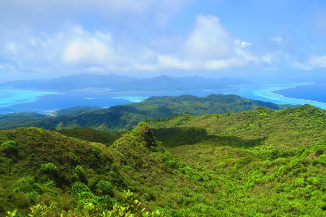 Raiatea- the second largest island in the Society Islands of French Polynesia- temehani plateau hike