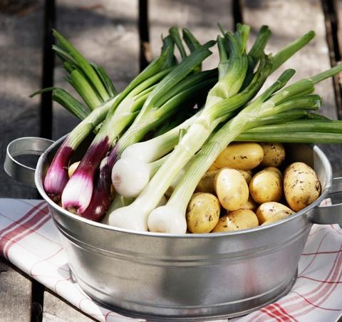Kevät ja kesä hehkuvat runsautta ja väriä. Inspiroidu kasvisten väriloistosta ja anna sen näkyä ruoanlaitossasi ja tarjoilussa!