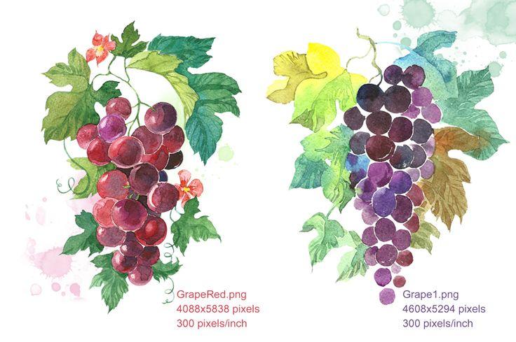 Set Watercolor