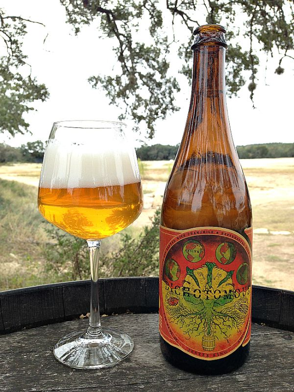 Jester King Brewery: BLOG