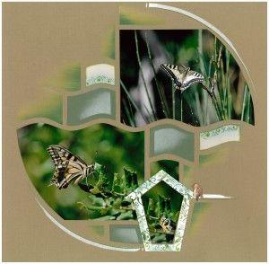 Azza kit Be Espère! et boite décor pour de beaux papillons