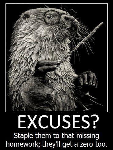 Excuses?