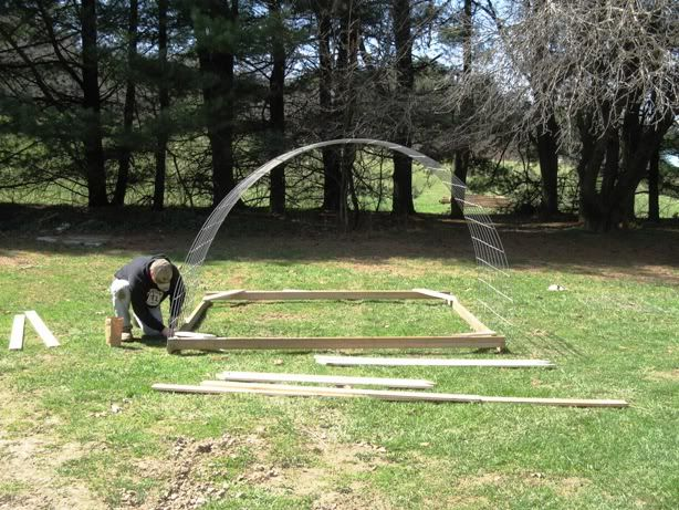chicken ''hoop house''....adapt this to use as false roof for pergola