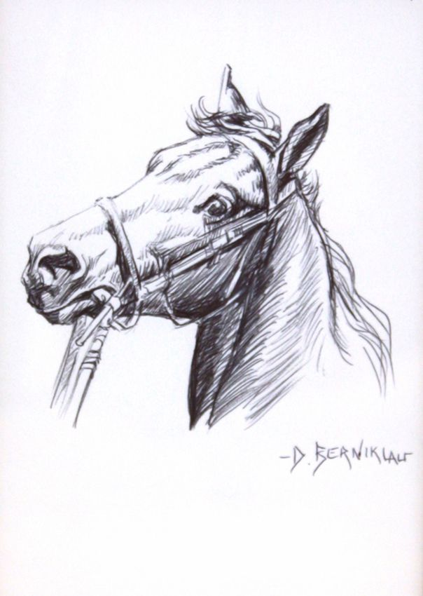 pen and ink horse pen and ink wood burning designs