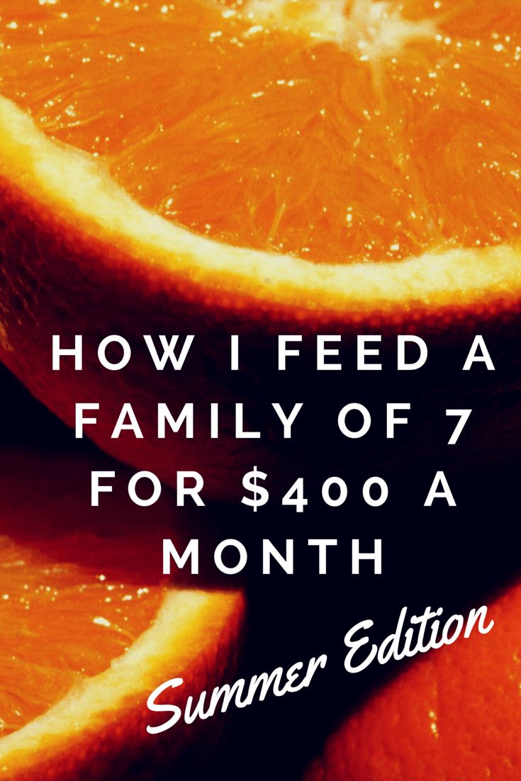 I had no idea,when I published the original post about how I feed my family on $300 a month, that it would get so much attention. After all, this is not a cooking blog. I'm not a very inventive or...