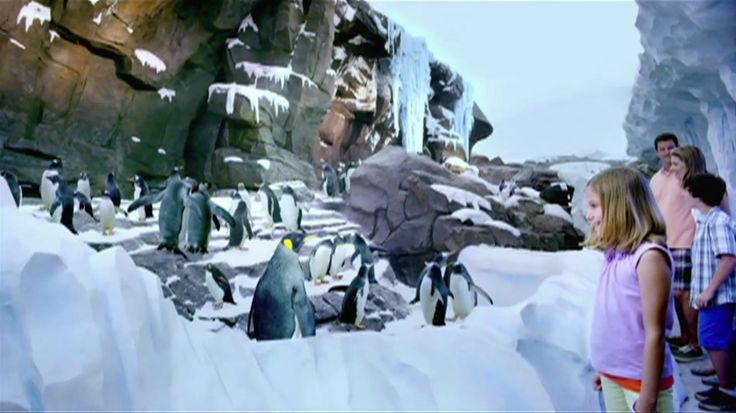 Antarctiva: Empire of the Penguin