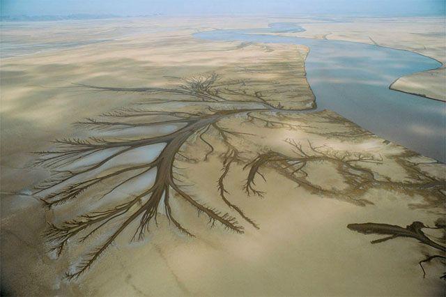 El estuario del río Colorado, Baja California Norte, México