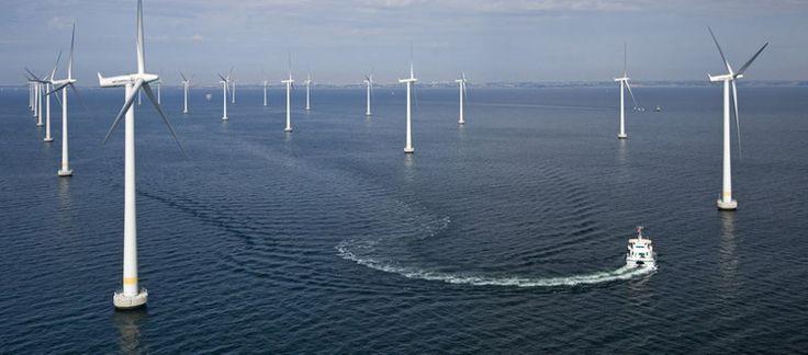 Планета Земля и Человек: Так ли бесплатна энергия ветра?