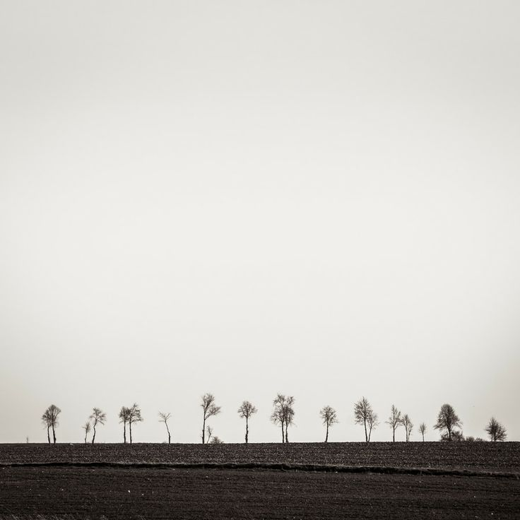Trees of Emptiness by Robert Manuszewski on 500px