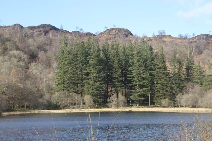 Yew Tree Tarn, Coniston