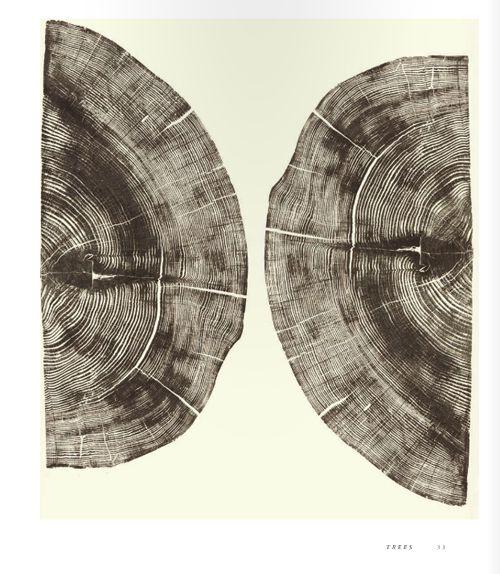 woodcut by bryan nash gill
