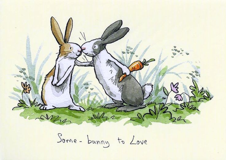 Some Bunny to Love