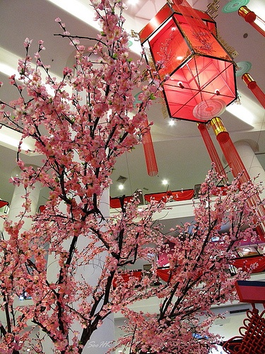 decoration at one of the mall...