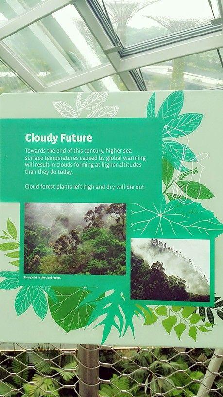 Cloudy future