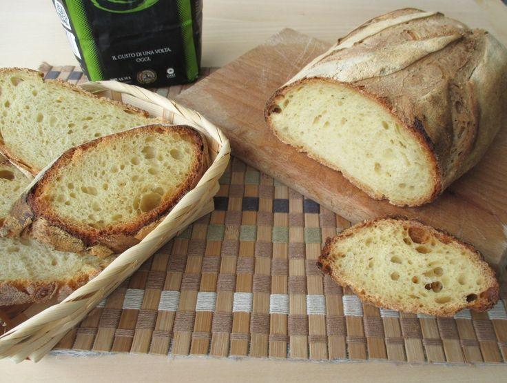 Pane con 100% farina tritordeum Oggi voglio farvi vedere una nuova ricetta di pane, un pane che ho realizzato utilizzato una cultivar nuova, iltritordeum,
