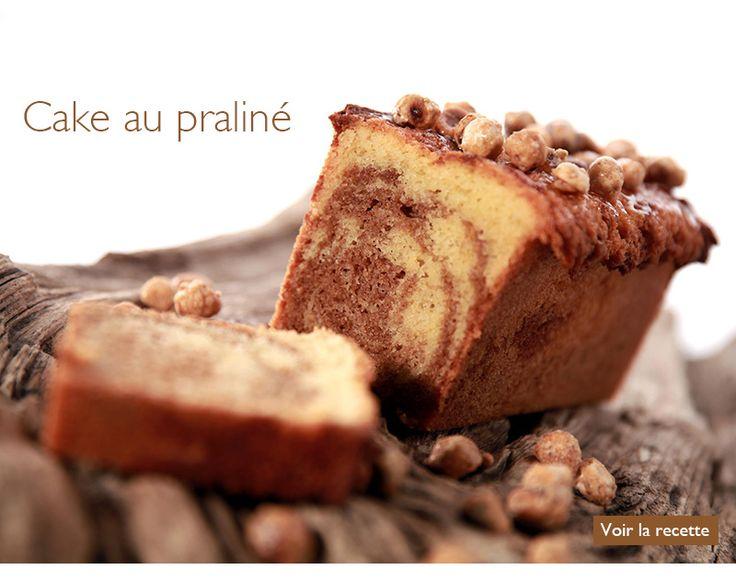 Recette du cake au praliné