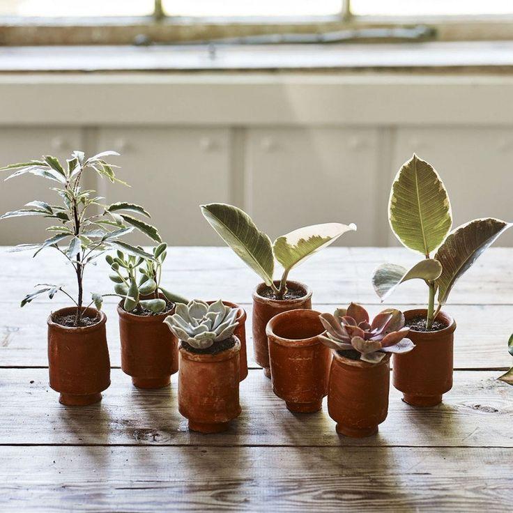 terracotta flower pots online