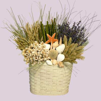 Seashell and Dried Floral Arrangements