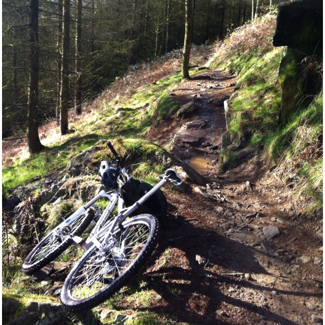 Whyte's Level Climb @ Afan Forest