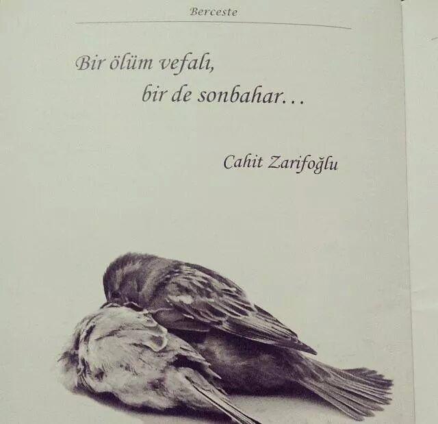 Bir ölüm vefalı, bir de sonbahar...   - Cahit Zarifoğlu  #sözler #anlamlısözler #güzelsözler #manalısözler #özlüsözler #alıntı #alıntılar #alıntıdır #alıntısözler