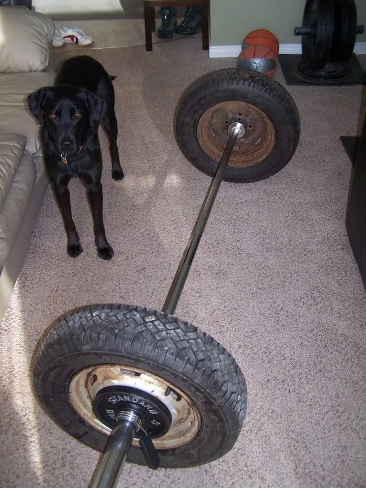 17 Best Images About Back Yard Gym On Pinterest Homemade