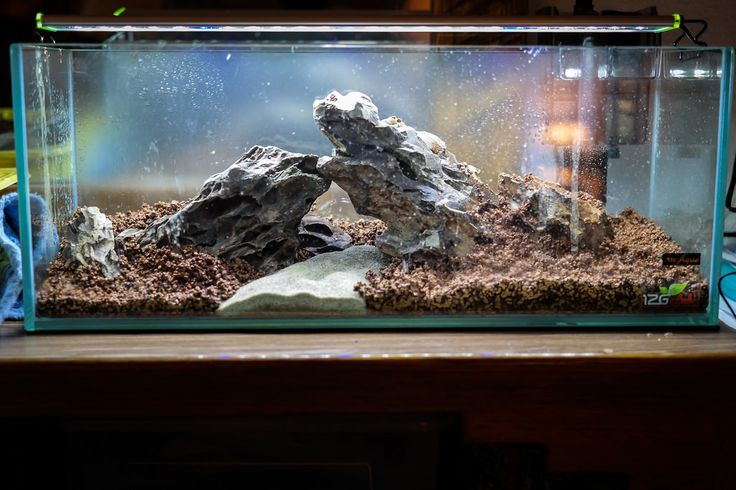 9 best Aquascaping/Reef-keeping images on Pinterest   Aquascaping ...