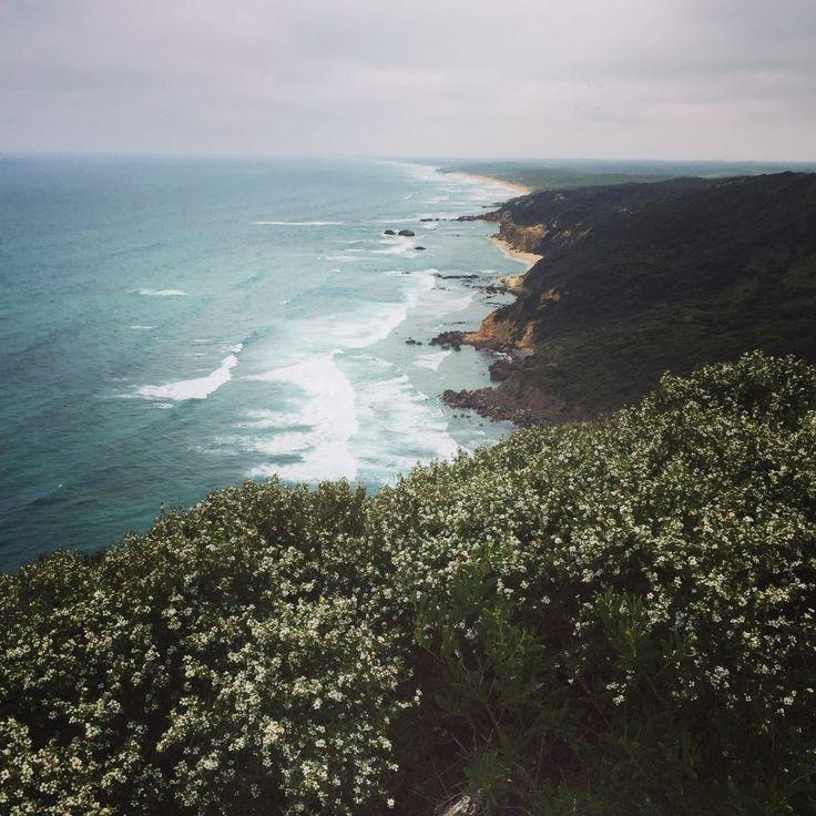 View looking towards Fingal & Gunnamatta beaches | see/do/wander