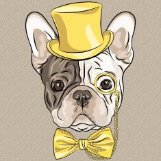 vector funny cartoon hipster French Bulldog dog vector art illustration