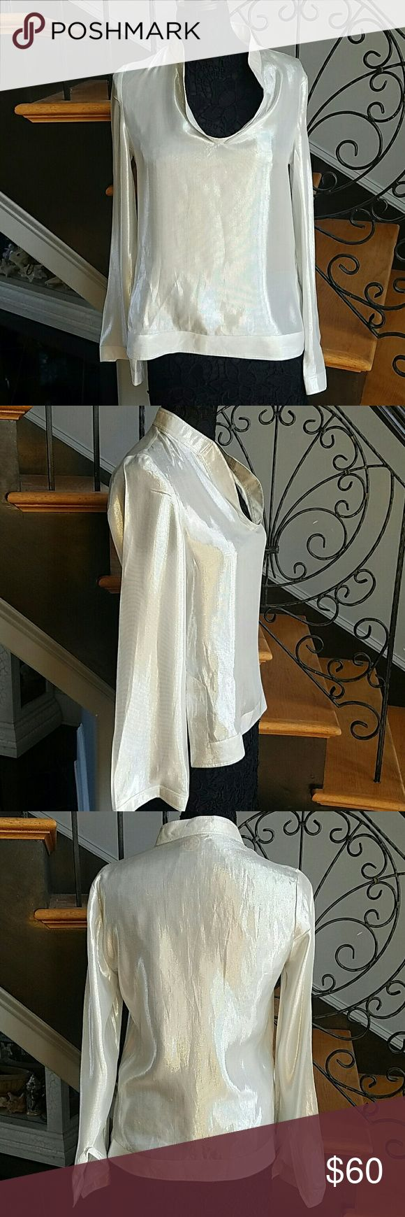 Tory Burch Top EUC Silk metallic blouse  No size info labled, however, I wear a 6 and it fits great.  The mannequin is a 4. Tory Burch Tops