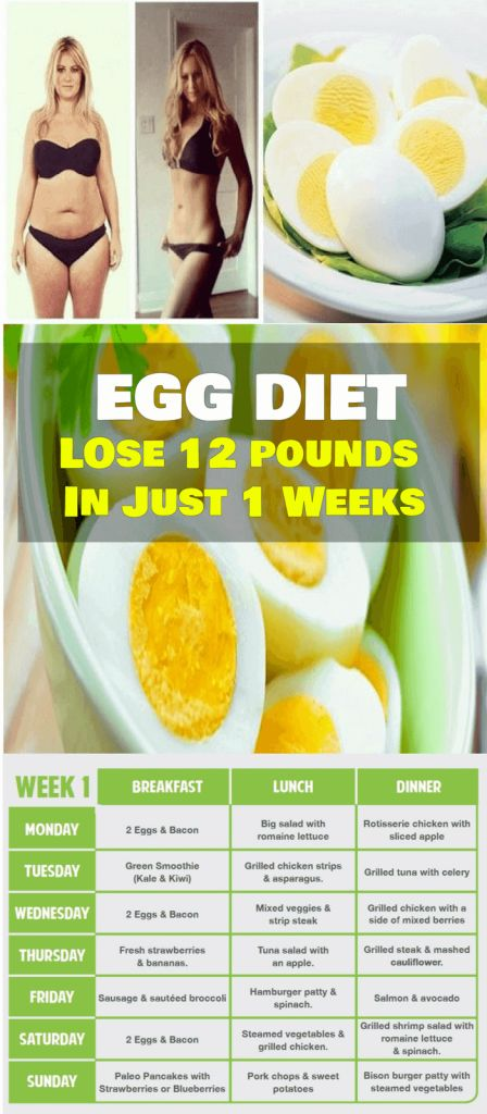 egg help to lose weight
