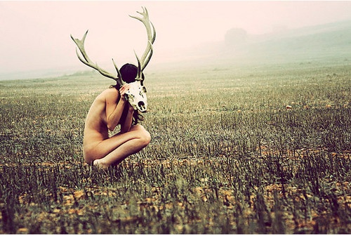 antler: Skull, Amazing Photography, Gema Gonzalez, Art Inspiration, Antlers, Beautiful, Artists Unknown, Creative Photoshoot, Deer