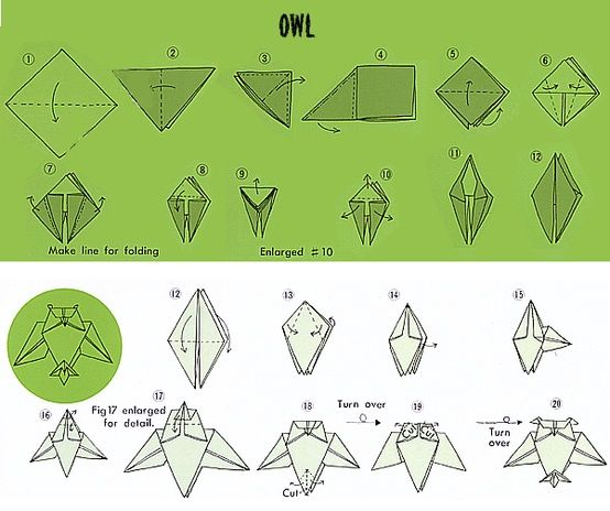 Origami Owl Folding Instructions