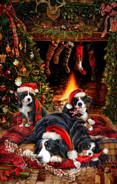 """New for 2015! Bernese Mountain Dog Christmas Holiday Cards are 8 1/2"""" x 5 1/2"""" and come in packages of 12 cards. One design per package. All designs include envelopes, your personal message, and choice of greeting.Select the inside greeting of your choice from the menu below.Add your custom personal message to the Comments box during checkout."""