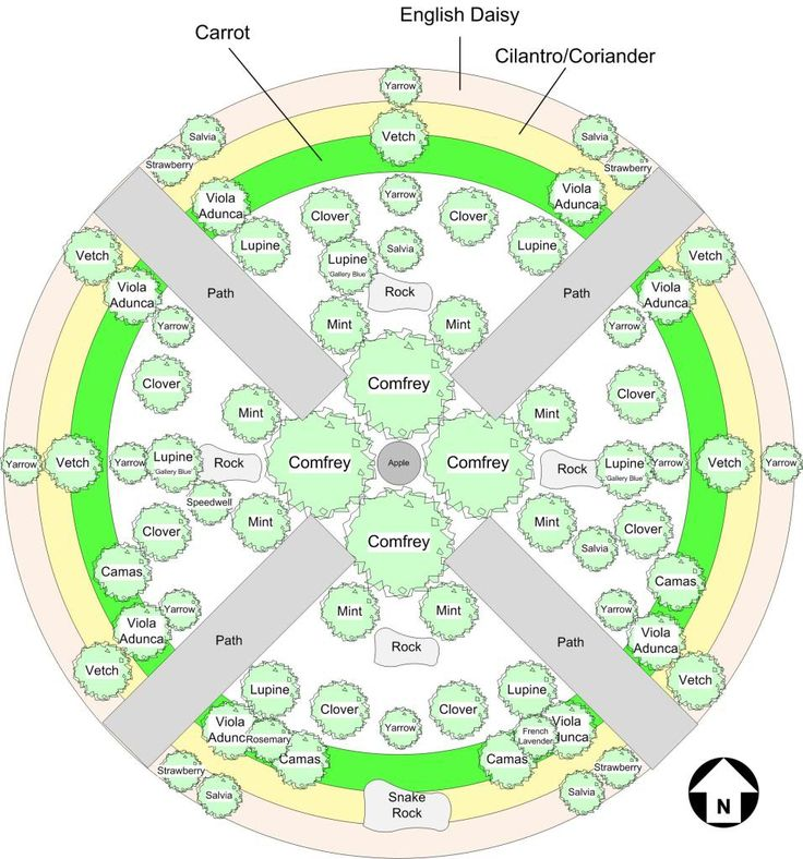 25 Best Ideas about Permaculture Garden on Pinterest